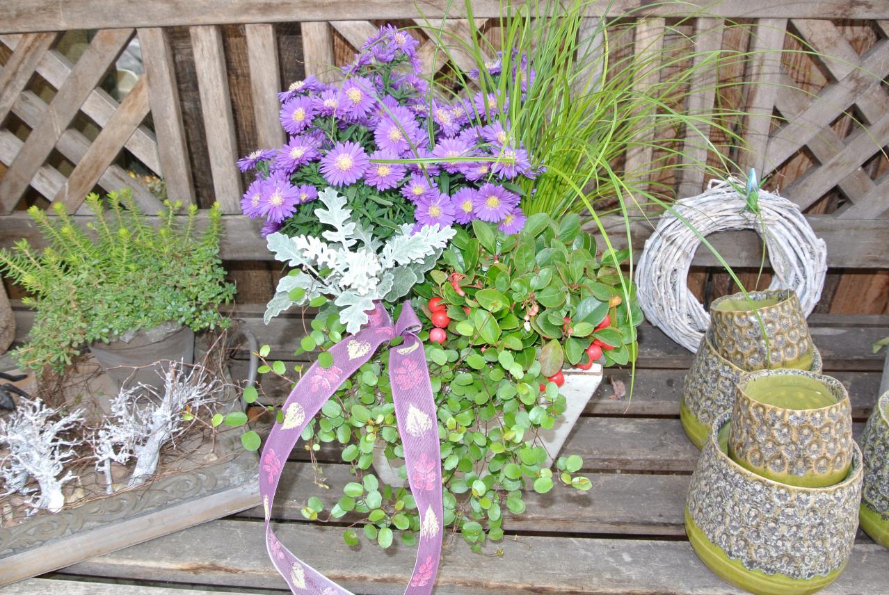 Blumen und Töpfe
